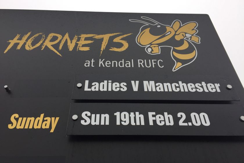 Wasps Update: Back in action at Mint Bridge TODAY (Sunday 19 February)