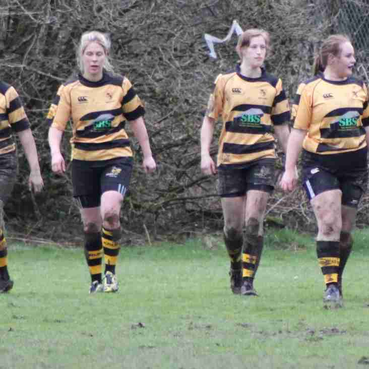 Messenger Interview with James Mackereth: Kendal Ladies Wasps Coach!