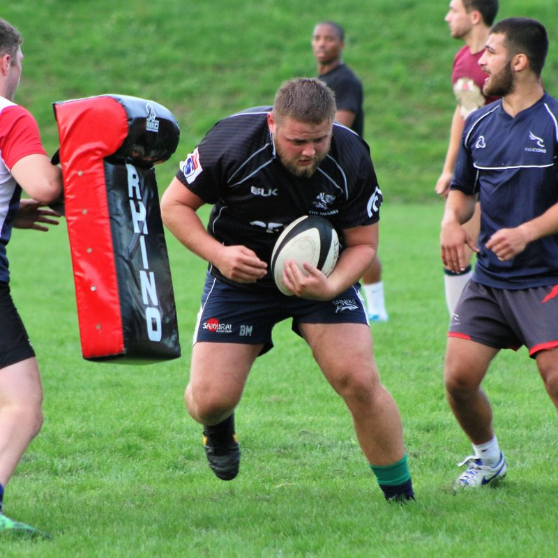 Rugby's Back with a BANG!  |   FREE ENTRY at HOME matches during August and All Welcome!