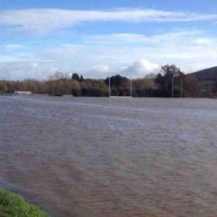 Game against Bristol Quins is postponed