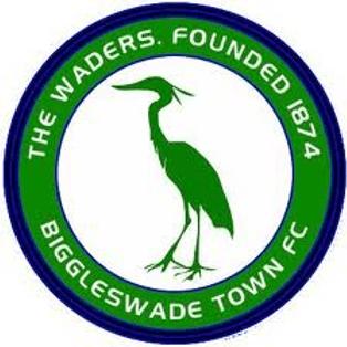 Match Report: Biggleswade Town (away)