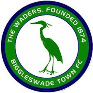 Match Report - Biggleswade Town (Home, League)