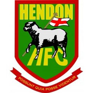 Match Report - Hendon (Away, FA Trophy)