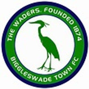 Match Report - Biggleswade Town (League, Away)