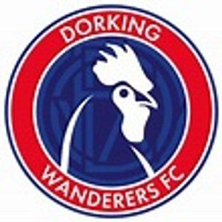 Match Report - Dorking Wanderers (Home - League)