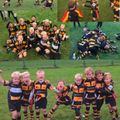 Camberley Rugby Camps for 2018