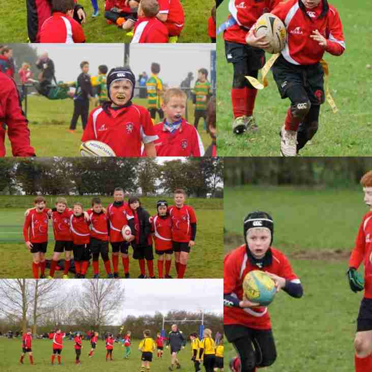 Mini Rugby players take on biggest opposition to date MINI cooper