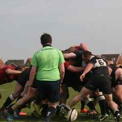 1st XV v Colchester III - 7th May 2016
