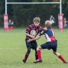 Crawley RFC U13's vs Cranleigh RFC U13's