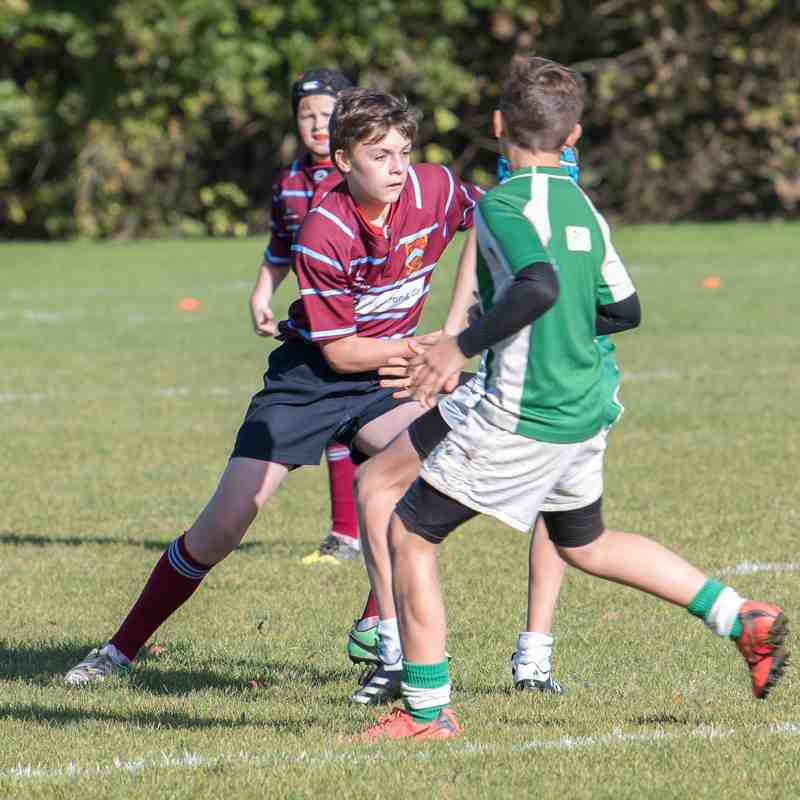 Crawley RFC U13's vs Horsham RFC U13's Nov '17