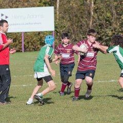 Crawley RFC U13's vs Horsham RFC U13's Nov '17