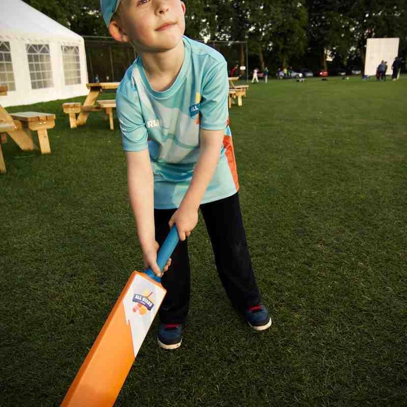 All Stars Cricket 2017