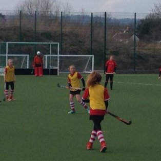 Fearless Falcons fly flag for Blackheath at Kent Cup
