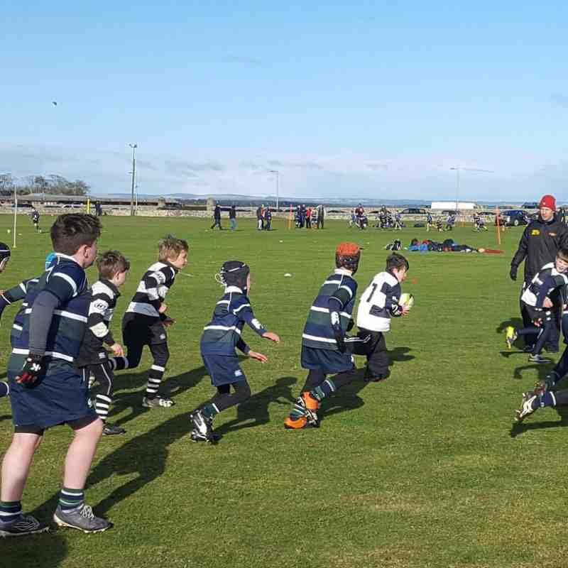 Interested in becoming a rugby coach?