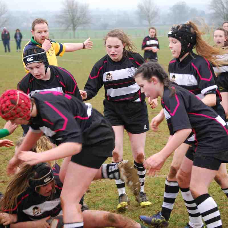 Girls U15 CRFC v North Dorset 12022017