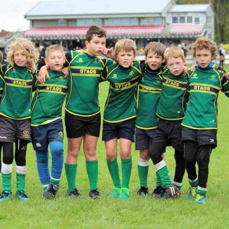 Stags Under 9's Cambridgeshire Festival 1st Oct 2017