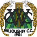 Five for Deery as Sunday XI lose narrowly at Oakfield
