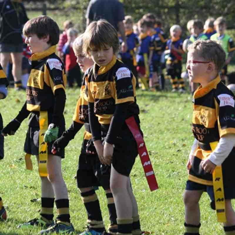 U7 Tigers and Leopards V Watford (16.10.11)