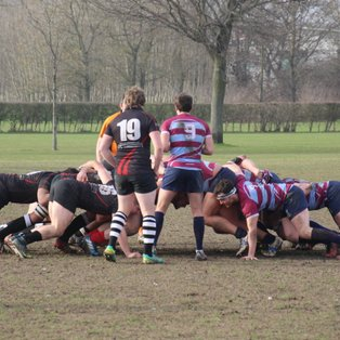 Canterbury IIs 62 Colchester Ravens 10
