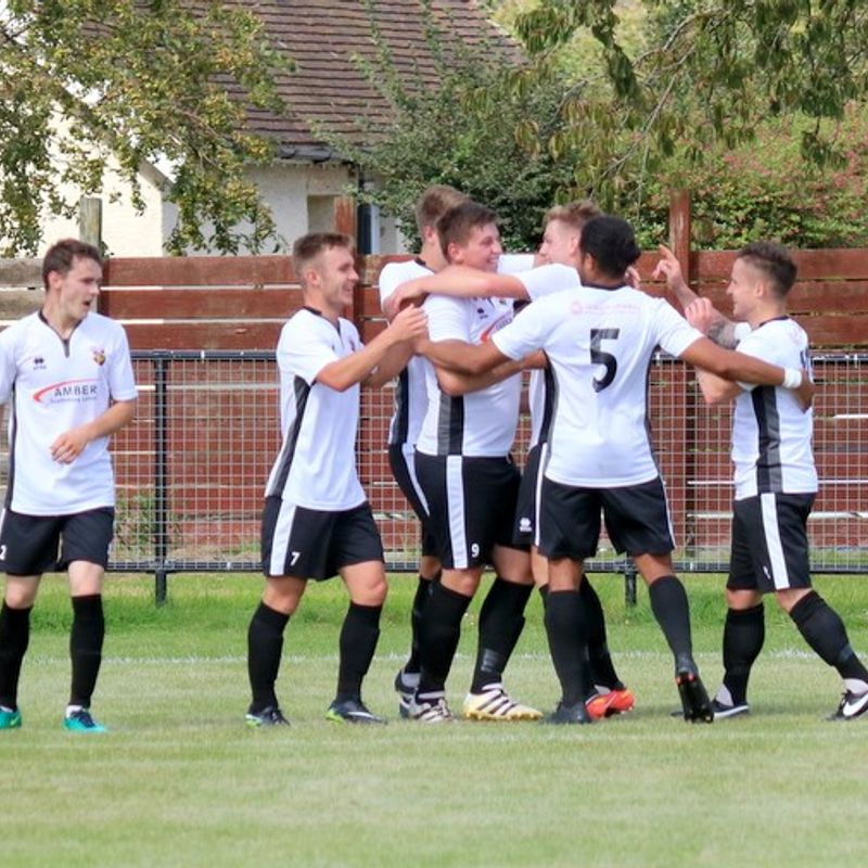 Potent Pagham hit YMCA for four.