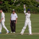 Ellison and Curtis lead Clevedon to resounding eight-wicket victory over Bedminster
