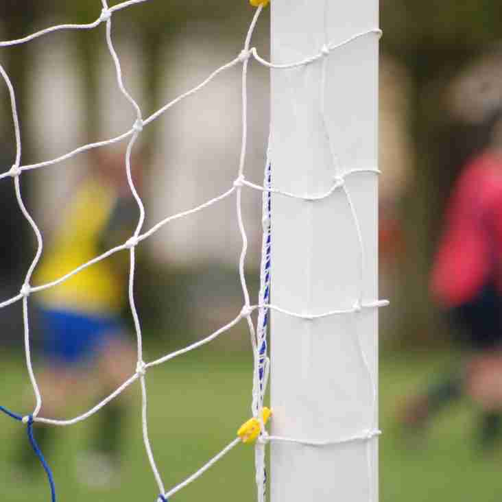 The FA has now released data from the largest survey ever undertaken into grassroots football.