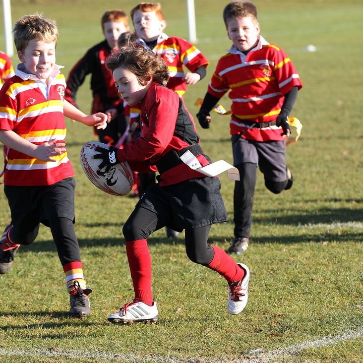 Mowden Park to host  North-East Minis Festival - Saturday 28th October 2017<