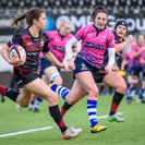 Saracens Too Strong for Sharks at Home