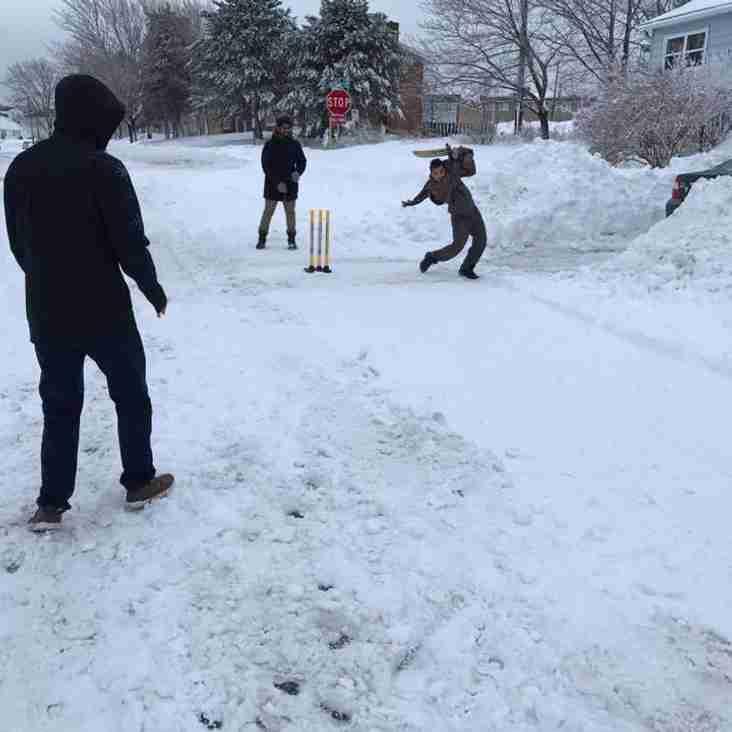 Indoor Cricket Starting Soon