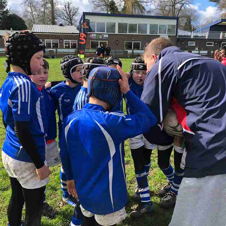 The Diss Minis Festival - 17th March 2019