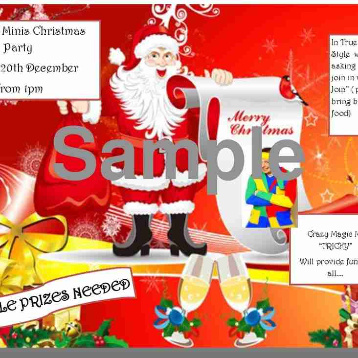 Annual Christmas Party Mini & Juniors 20th December 2015 1-3 PM