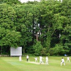 Pics: Bristol CC 3rd XI vs Bristol Lions, Home