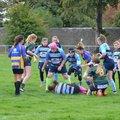 Knights Under 13 Girls beat Old Bristolians  20 - 115