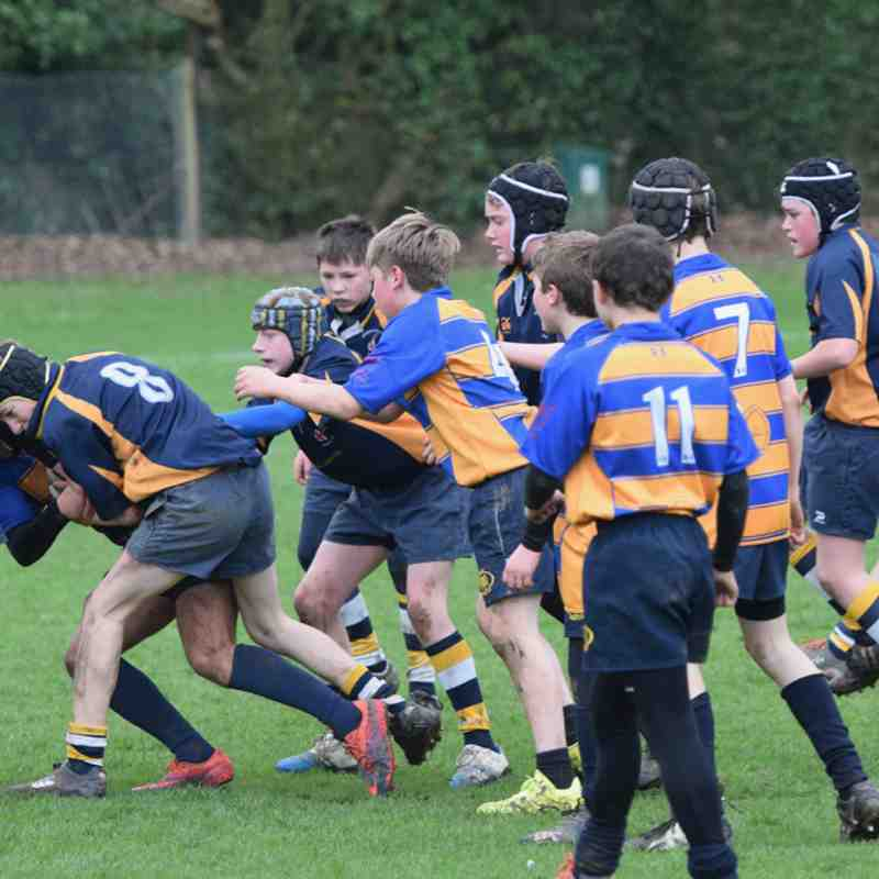 Romsey U13 Cruise to Hampshire Vase success
