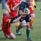 Norfolk Vikings mount a 7 try raid at a wind swept Volac Park