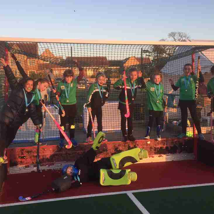Lewes Hockey Club Juniors win gold and silver in the Sussex County Finals