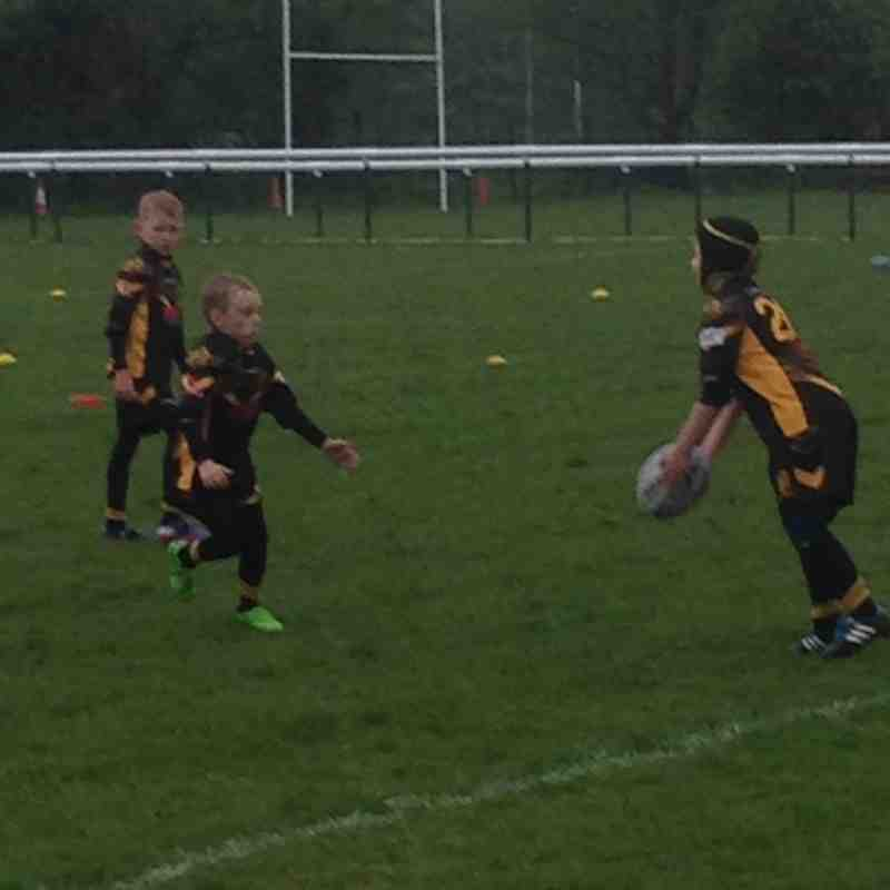 Good Friday rugby u7s