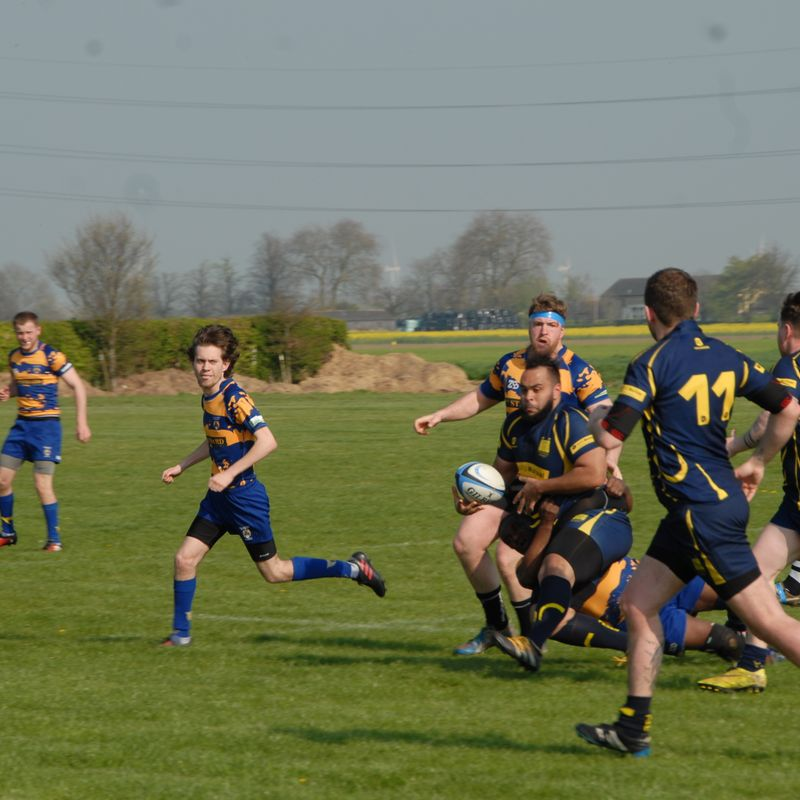 Thorney '1st XV' Vs Bedford Swifts 8th April 2017