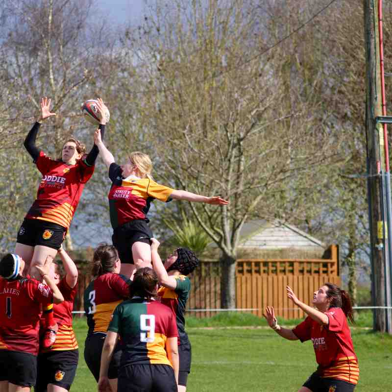 Harrogate Ladies Vs Windsor Ladies