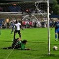 STEELMEN PICKED OFF BY TULIPS