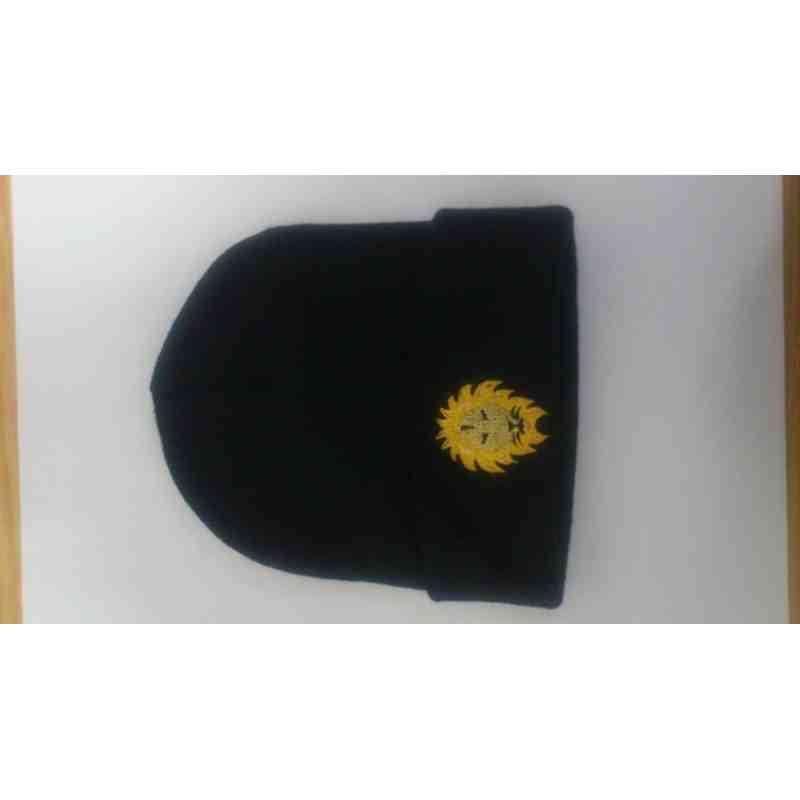 Lions Hats