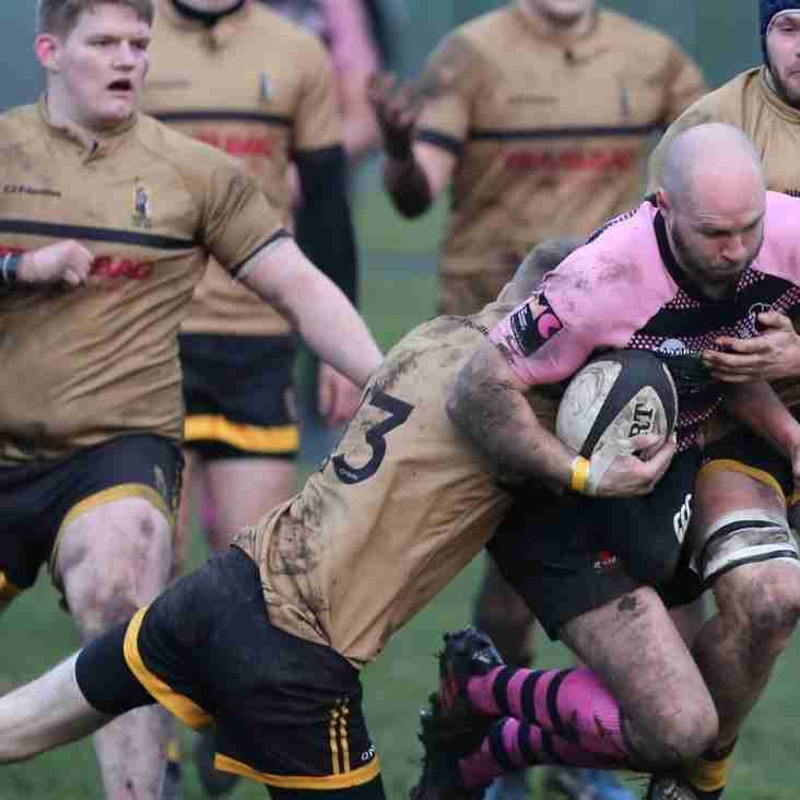 1st XV sunk by nightmare first half