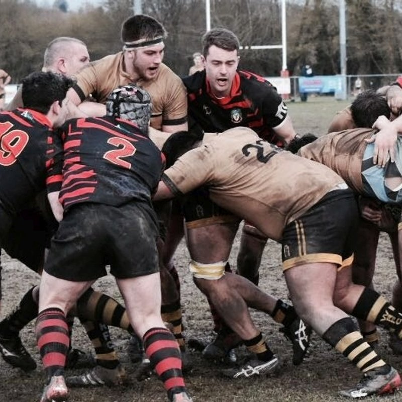 1st XV Improved performance against top T's