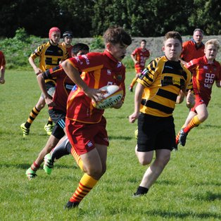 CYR U15 County 10's tournament