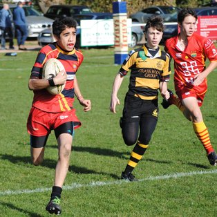 Tring 15 - 24 Cambridge U15
