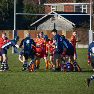 Colts travel light to Chelmsford