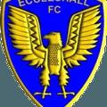 Sandbach 4-2 Eccleshall