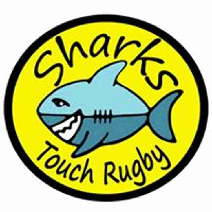 Sharks Touch Rugby - Adult and Youth Summer League - Starting Soon!