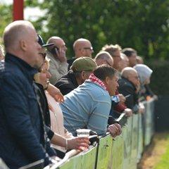 Needham Fans