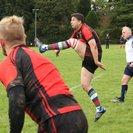 Locksheath Pumas Prove Too Much for Alton 1st XV